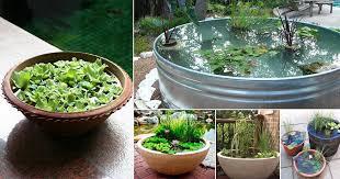 container water garden. Brilliant Garden 13 Peaceful DIY Container Water Garden Ideas For Gardeners   Balcony Web On W