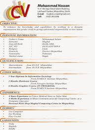 Curriculum Vitae Examples Jobcred Blog