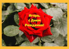 """Картинки """"С Днем Рождения, Игорь"""" (50 открыток) • Прикольные картинки и  позитив"""