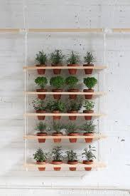 inspiring diy herb gardens shelterness planter ideas hanging garden always amaze this case great addition mini indoor wall table window kitchen plants
