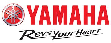 2017 yamaha fz 09 in san go