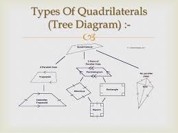 Venn Diagram Of Quadrilaterals Schematic Diagram Quadrilateral Schema Wiring Diagram