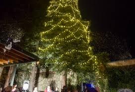 Chico Christmas Tree Lighting Oroville Christmas Trees Lights Lit Chico Enterprise Record