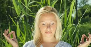 bamboo garden yoga. Wonderful Yoga New Private Yoga Classes U0026 Instruction Available To Bamboo Garden B