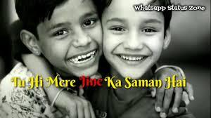 Happy Birthday Brother Hindi Whatsapp Status 30 Second Video