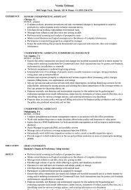 Underwriting Assistant Resume Samples | Velvet Jobs