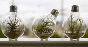 can you recycle light bulbs f53 in stunning selection with recycle light bulbs47 light