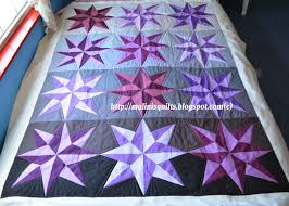 My Sewing and Quilting Adventures: 2014 Pantone Quilt Challenge ... & Star Burst Quilt Front - showing the outline quilting Adamdwight.com