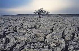 Самарские почвы Борьба