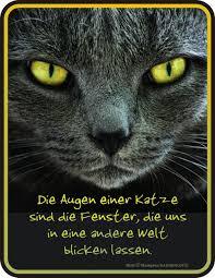 Abschied Sprüche Katze Sprüche Für Beileidskarte Spruch Für