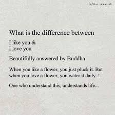 I Love Love Quotes New What Is The Difference Between I Like You I Love You Quotes