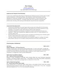 Banking Executive Sample Resume Nardellidesign Com