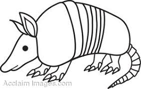 Small Picture Black and White Clip Art of an Armadillo Coloring Page