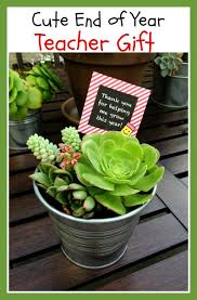 cute idea for end of year gifts for little one s teachers