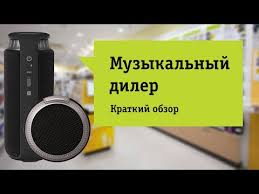 Акустическая система Bluetooth <b>Z MusicDealer</b> Medium <b>Rare</b> Dark ...