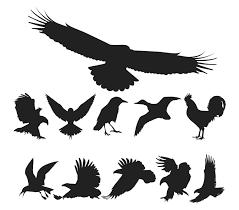 鳥のシルエット 無料イラスト ベクターai 無料イラストフレーム
