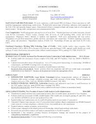 Resume Portfolio For Resume