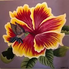 hibiscus flowers hummingbird hibiscus flower flowers bird birds nature