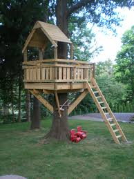 Simple Tree House Designs And Plans P6240066 Best Home Ideas