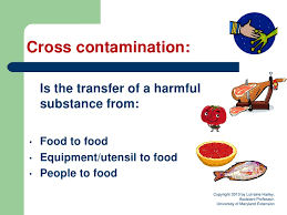 Cross Contamination Food Safety Is For Everyone Module 3 Cross Contamination