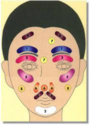 Skin Scope Color Chart Skin Scope Analyzer Professional Skin Damage Skin Cancer
