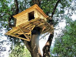 free treehouse plans kits kids heating greenhouse tree house you can live in pre built houses