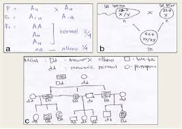 Example Of A Students Mental Model On The Concept Of