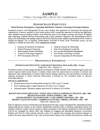Executive Sample Resume Chief Financial Officer Senior Finance