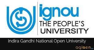 books and internet essay on urdu