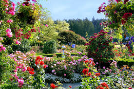 the butchart gardens in british columbia is one of our top picks for the best summer