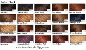 The Guest Blogger Brown Hair Colours Chart