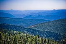 blue cloud environment forest green landscape mountain