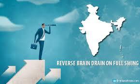 reverse brain drain in why now my  reverse brain drain in image