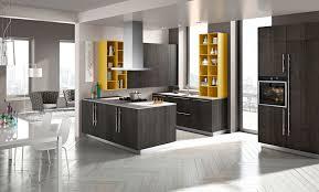 Open Kitchen Cupboard Modern Contemporary Kitchen Contemporary Kitchen Design By