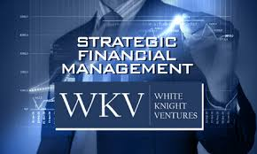 Finnancial Management Strategic Financial Management Build Financial Concepts