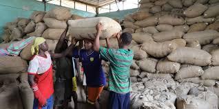 En Côte d'Ivoire, la crise du cacao touche durement les planteurs