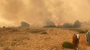 Orman yangınları: Marmaris'teki yangın İçmeler'e ilerliyor - Dünya Gazetesi