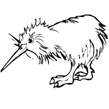 Small Picture Kiwi Bird Wet Hair Coloring Pages Kiwi Bird Wet Hair Coloring