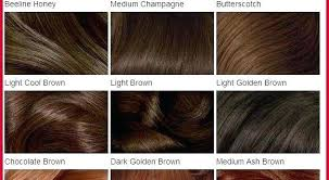 Medium Brown Hair Colour Chart Light Brown Hair Color Chart Fooru Me