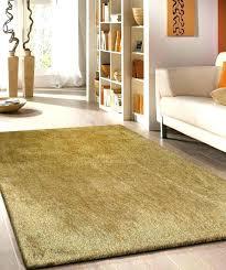 5 x 3 rug 3 x 5 bathroom rug 5 x 3 rug fascinating 4 x