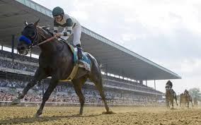 2015 Belmont Stakes Chart All Sources Betting On Belmont Stakes Declines 9 2 Percent