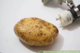 image titled remove a broken light bulb with a potato step 2