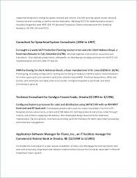 Example Good Resume Enchanting Summary On A Resume Best Of Job Summary Resume Examples Bizmancan