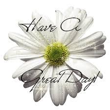 good day beautiful white flower