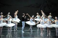 Image result for swan lake free images