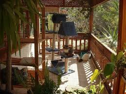 outside cat house plans new 64 best outdoor cat enclosure ideas images on of outside