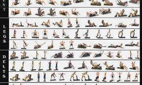 Exercise Online Charts Collection