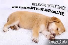 Lustiger Spruch Zum Wochenende Mit Hund Ausschlafen Sprüche Suche