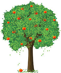 realistic apple tree drawing. Exellent Apple Painted Apple Tree PNG Clipart For Realistic Drawing L