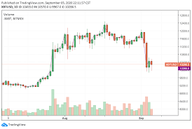 Bitcoin, although known for its sharp fluctuations, shocked the markets when in march the price crashed to almost half its value, bringing it down to $5000. 3 Reasons Why Bitcoin Suddenly Dipped Under 10k Today And Recovered